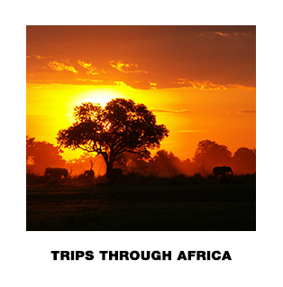 Trips Through Africa